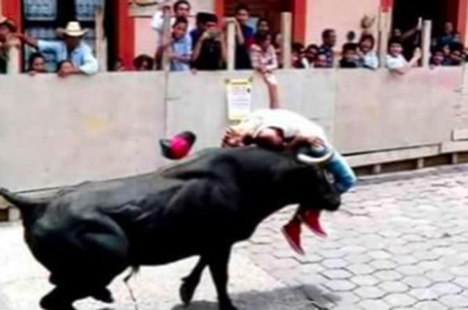 ¡Trágica embestida! Joven es proyectado por un toro (+VIDEO)