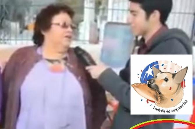 El 'Chilaquil' es historia; un ladrón de empanadas es el nuevo perro famoso de internet (+VIDEO)