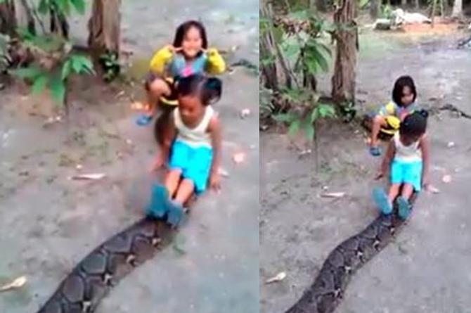 Genera indignación en redes sociales video de niñas jugando con una anaconda (+VIDEO)